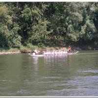 Drachenboot 2016 541