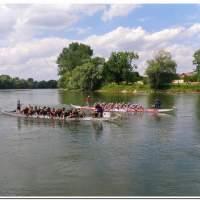 Drachenboot 2016 543