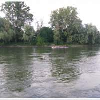 Drachenboot 2016
